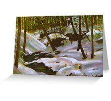 Winter Scene-Mt. Tom, Holyoke, MA Greeting Card