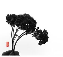 Parsley Bonsai 01 by 73553