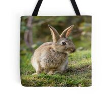 Cute Wild Leveret Curiosity Tote Bag