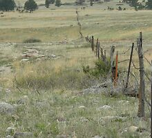 Open Space Fence by Jimilagro