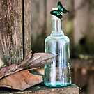 Butterfly Bottle by Kimberly Palmer