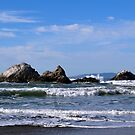 Seal Rocks at Ocean Beach by Nic Horton
