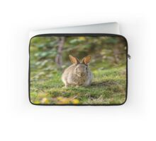 Cute Wild Leveret Looking At You Laptop Sleeve