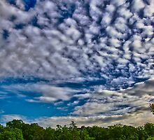 Alto Cumulus Clouds in May by DBGuinn