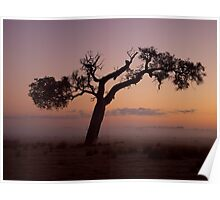 """Rural Mist At Sunrise"" Poster"
