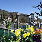 Nature photo  of  Thun hotels.... by fladelita