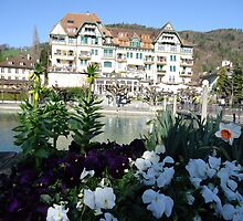 Thun Lake,Switzerland by fladelita