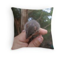 Agile Antechinus Throw Pillow
