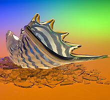 Glass Shell and Broken Glass by Austin Weaver