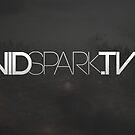My Logo Design for VidSpark.tv by Joe  Barbour