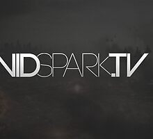 My Logo Design for VidSpark.tv by Joe  Barbour