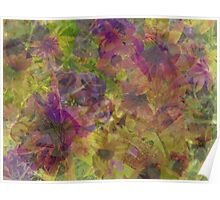Floral Abstract ~  Poster