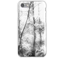 Spook in the Snow iPhone Case/Skin