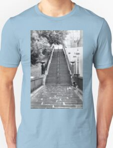 Playfair Steps, Edinburgh T-Shirt