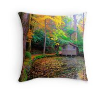 All the colours of the rainbow in autumn at Alfred Nicholas Gardens Throw Pillow