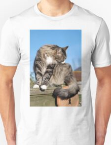 Tabby cat cleaning fur Unisex T-Shirt