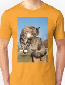 Tabby cat cleaning fur T-Shirt