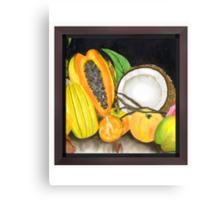 Dry Coconut & Juicy Friend Fruits Canvas Print