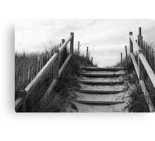 through the dune Canvas Print