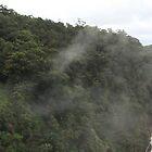 Kuranda Water Falls by Scott Schrapel
