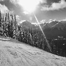 Skiing the Trails at Lake Louise by Ryan Davison Crisp