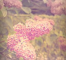 Vintage Style Lilacs by Rewards4life