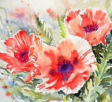 Poppy Power by Ruth S Harris