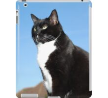 Senior black and white cat iPad Case/Skin