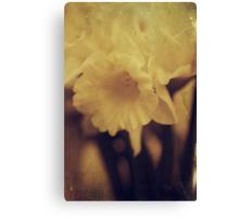 Pale Yellow Canvas Print