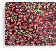 Red  Grape Duvet Metal Print