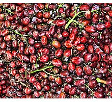 Red  Grape Duvet Photographic Print