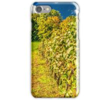 Vineyard-autumn painting, oil painting, nature iPhone Case/Skin