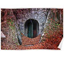 Mysterious Door... Poster