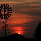 Windpomp  water vir die dorsland! by Rina Greeff