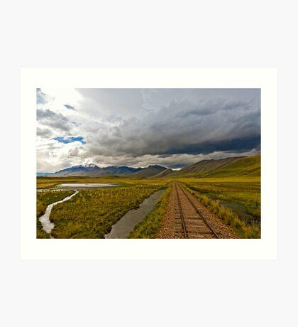 Altiplano Art Print