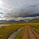 Altiplano by Konstantinos Arvanitopoulos