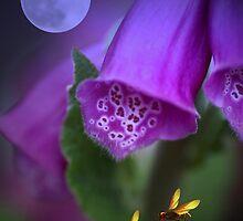 Foxgloves under the moonlight by walstraasart
