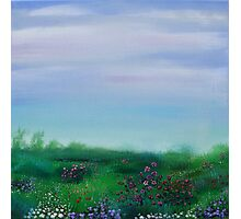 FIeld of Spring flowers Photographic Print