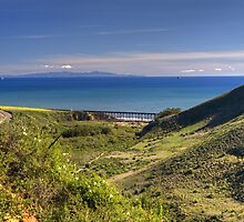 Gaviota Coast by Cathy L. Gregg