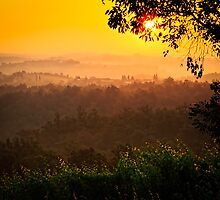 San Gimignano Hills #2 by Inge Johnsson