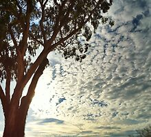 Land Down Under, Pillows in the Sky by LJ_©BlaKbird Photography