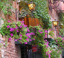 Purple Petunia's in Venice by Tamara  Kaylor