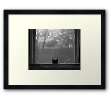 Don't  Even Think It! Framed Print