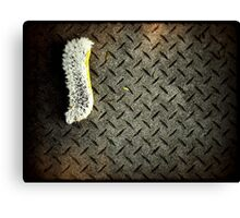 iPhone brush II Canvas Print