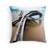 Lake Michigan Breakwater Throw Pillow