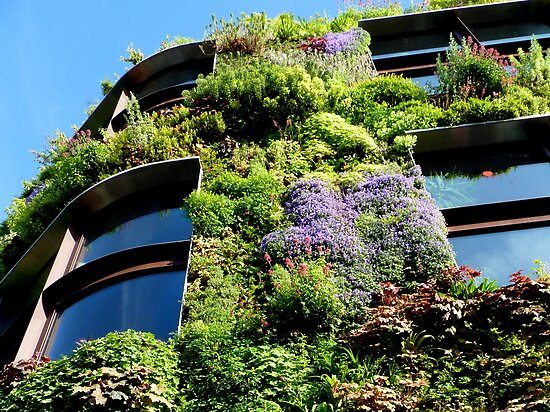 Vertical garden - Blooming now  by bubblehex08
