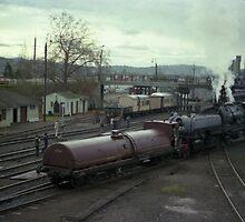 Beyer Garrett Steam Engine @ Albury, Australia 1980 by muz2142