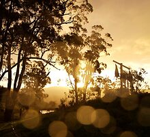 ruralscapes #128, wash day wet by stickelsimages