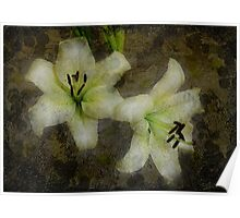 White Lilies Composite Painting Poster