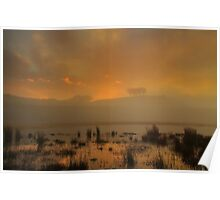 Distant trees in the fog.  Poster